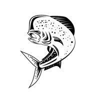 Mahi-mahi or Common Dolphinfish Jumping Up High Retro Black and White