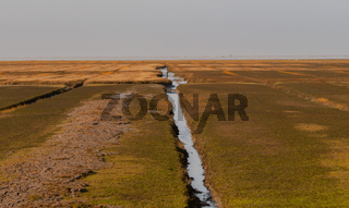 Priele und Feuchtfläche der Nordseeinsel Sylt