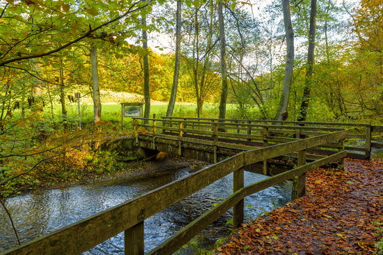 Bridge over the Düssel in the Neandertal