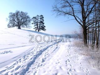 Winterweg im Schnee.