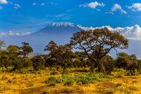Amboseli is a biosphere reserve