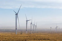 group of wind turbines on wilderness