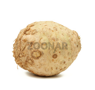 round celery root isolated on white background