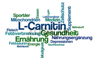Word Cloud on a white background - L-Carnitine - L-Carnitin (German)