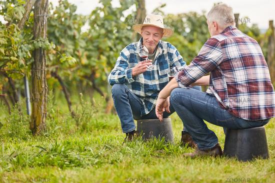 Zwei Weinbauern trinken ein Glas Rotwein
