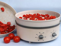 Dehydrator with tomatoes
