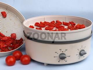 Dörrgerät mit Tomaten