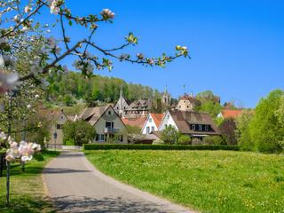 Bebenhausen with monastery