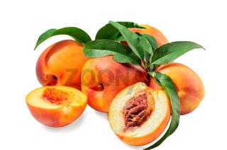 fruits of nectarine