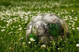 Old football ball hidden in the high grass flower and weed filed