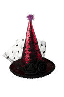 Shiny halloween hat on a white background.
