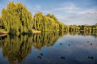 Merseburg, Germany - June 18, 2019 - idyll with a lake at the city park