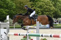 Horse Jumping Class S in Darmstadt Kranichstein without Spectators