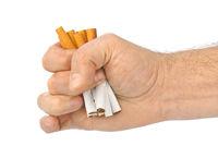 Broken cigarettes in hand