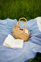 Very beautiful picnic in nature in the park. Straw bag, book, blue plaid. Outdoor recreation. Close-up.