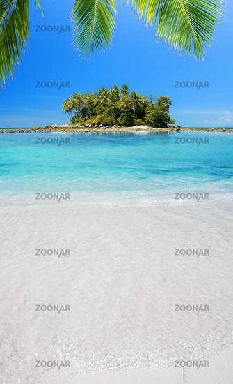 Tropical Heaven