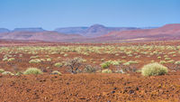 Scenic view of the Palmwag Concession Area in Namibia.