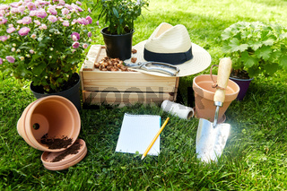 garden tools, wooden box and flowers at summer