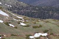 Colorado Mountains views along Esta park driving trails