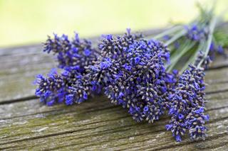Lavendel auf altem Holz