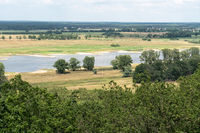 Elbtalaue in the Wendland near Gorleben, Lower Saxony