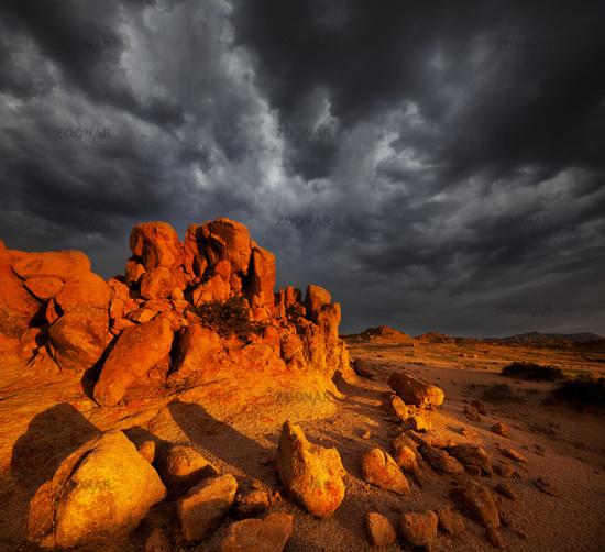 Stone desert