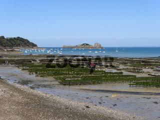 Austernzucht in Cancale, Bretagne