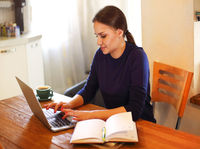 Brunette woman using laptop working at home