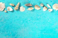 Sea banner with a place for text, seashells, shot from the top on a blue background