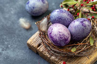 Blue and purple Easter eggs in the nest.