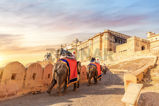 Tourists on the elephants in Amber Fort, Jaipur, Rajasthan, India