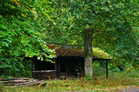 autumn forest in october, forest hut