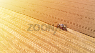 Aerial drone view of combine harvester collects harvest grain in a wheat field in summer sunny day. Agricultural machinery works in the farmland