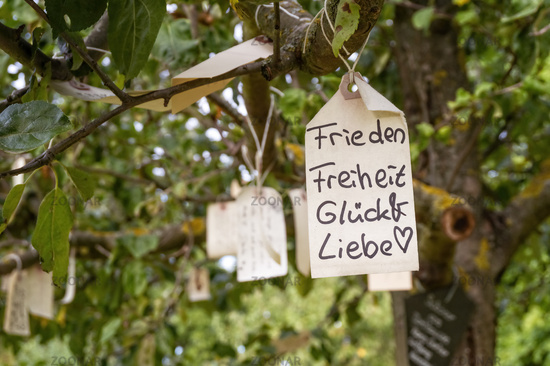 Label with wishes hangs in a tree
