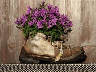 Blumen-Dekoration