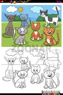 cats and kittens characters group color book page