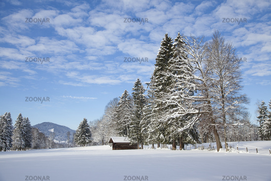 Winter landscape in Bavaria, Germany