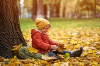 Little cute boy have fun outdoors in the park in autumn time sitting in the leaves under a tree in an autumn warm jacket and a cute hat