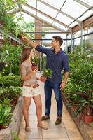 Frau und Mann kaufen Pflanzen im Gartencenter