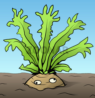 Root Vegetable Arms Cartoon