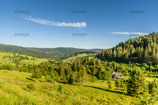 Hilly landscape in the Black Forest near Todtmoos, Baden-Wuerttemberg, Germany