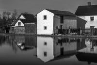 Reflection in the village pond