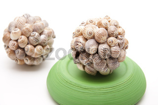 Muschelball mit Steinschale