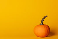 Halloween pumpkin on orange
