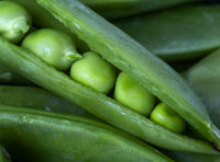 Close Up Peas