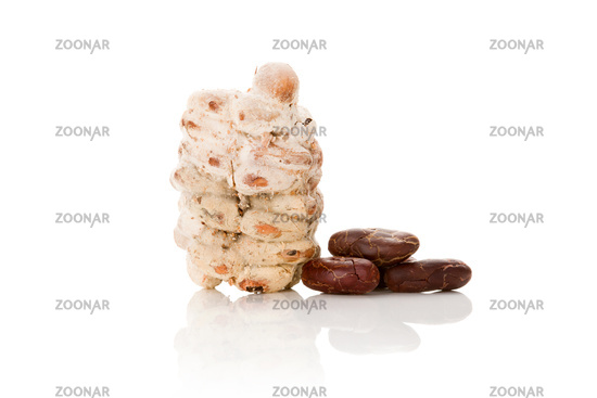 Raw and fresh roasted cocoa beans isolated on white background.