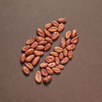 Natural cocoa peas in the shape of big bean.