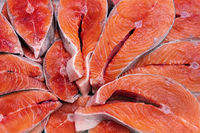 Lot of pieces raw Pacific Red Fish Chinook Salmon cut into steak, ready for cooking