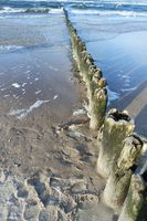 Old groynes on the Baltic Sea