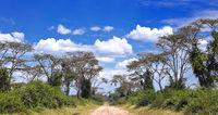 Famous Ishasha Road in Uganda